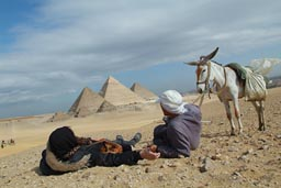 Tourist, guy and donkey, in front of Pyramids out in the desert.